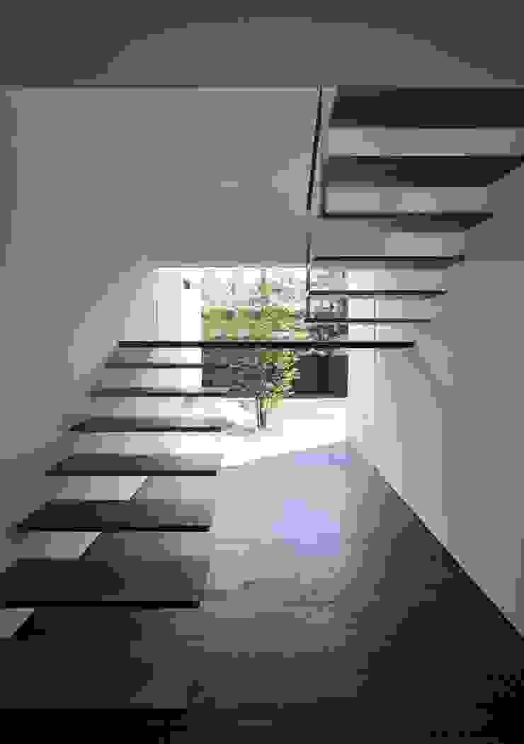YAMANOUCHI House モダンスタイルの 玄関&廊下&階段 の 澤村昌彦建築設計事務所 モダン