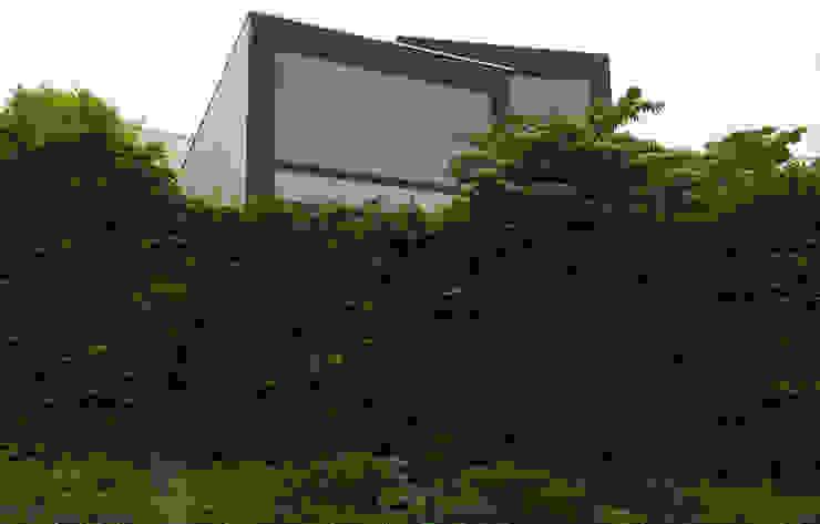 Сад в стиле модерн от Lustenberger Schelling Landschaftsarchitektur Модерн