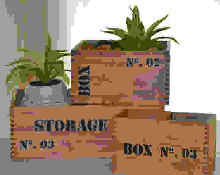 Caja de Madera Storage Patinada:  de estilo industrial por Zinniadeco,Industrial Madera Acabado en madera