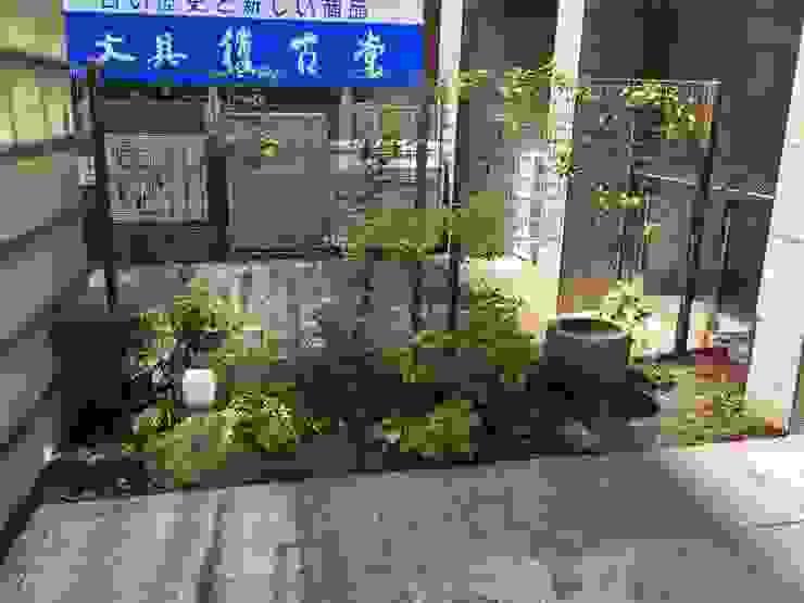 博多水炊きとり田 アジア風 庭 の 庭園空間ラボ teienkuukan Labo 和風