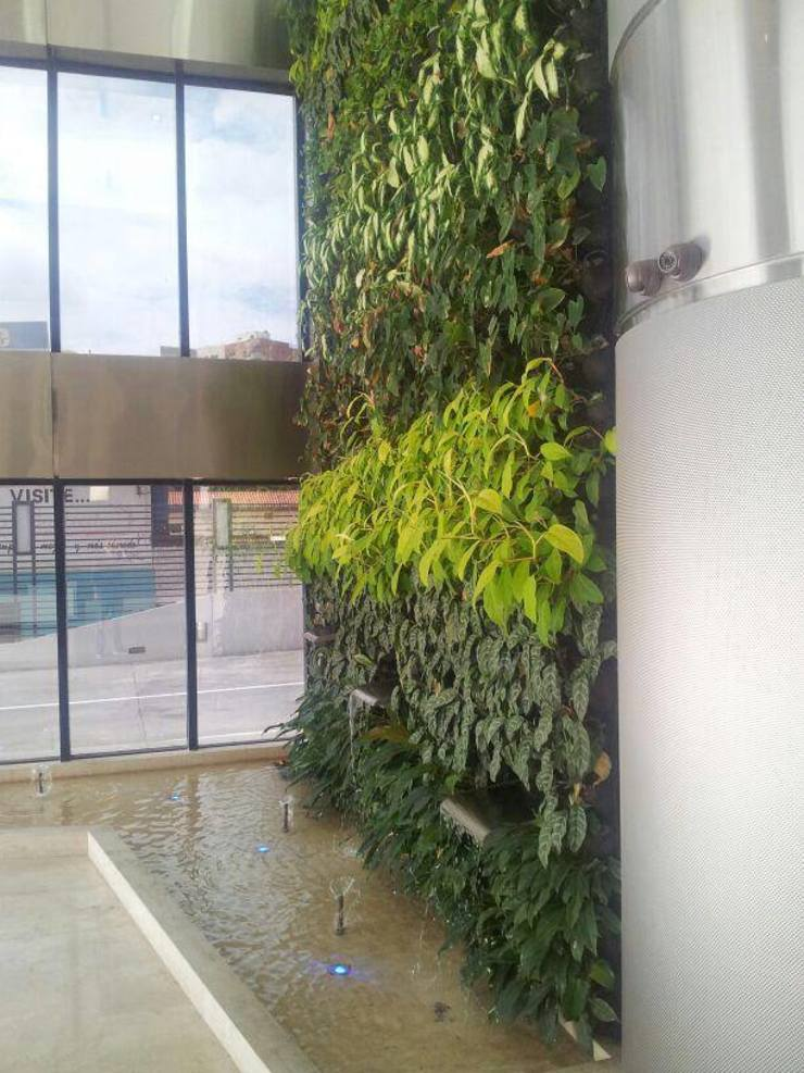 Jardín vertical Jardines de estilo moderno de La Fabrica, arquitectos y Asociados C.A. Moderno