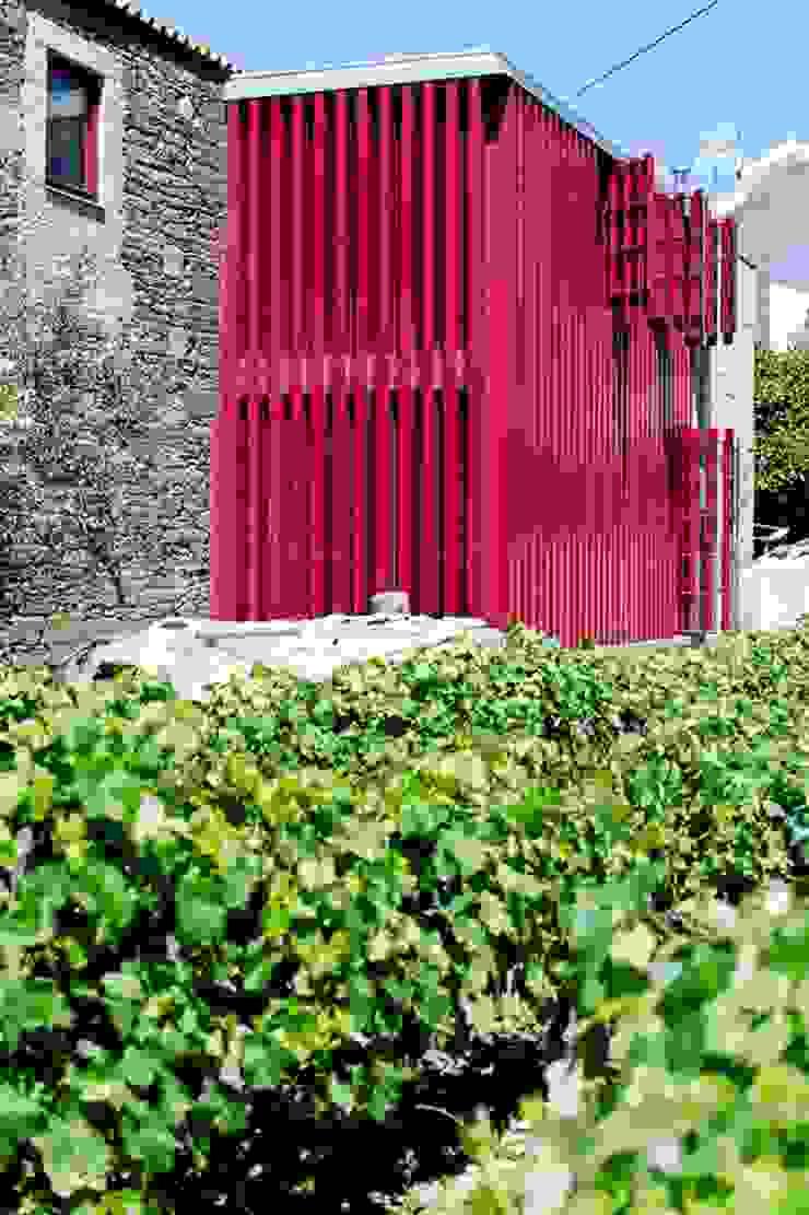 Reabilitação de Casa em Vilar de Maçada por olgafeio.arquitectura