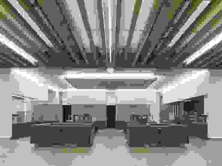 farben schiller Modern kitchen Wood Grey