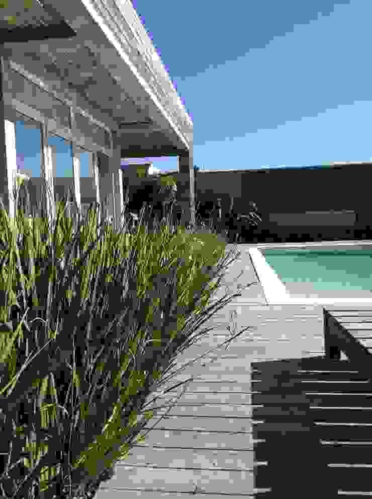 Casa <q>La Familia</q> Piletas modernas: Ideas, imágenes y decoración de Estudio de arquitectura Vivian Avella Longhi Moderno