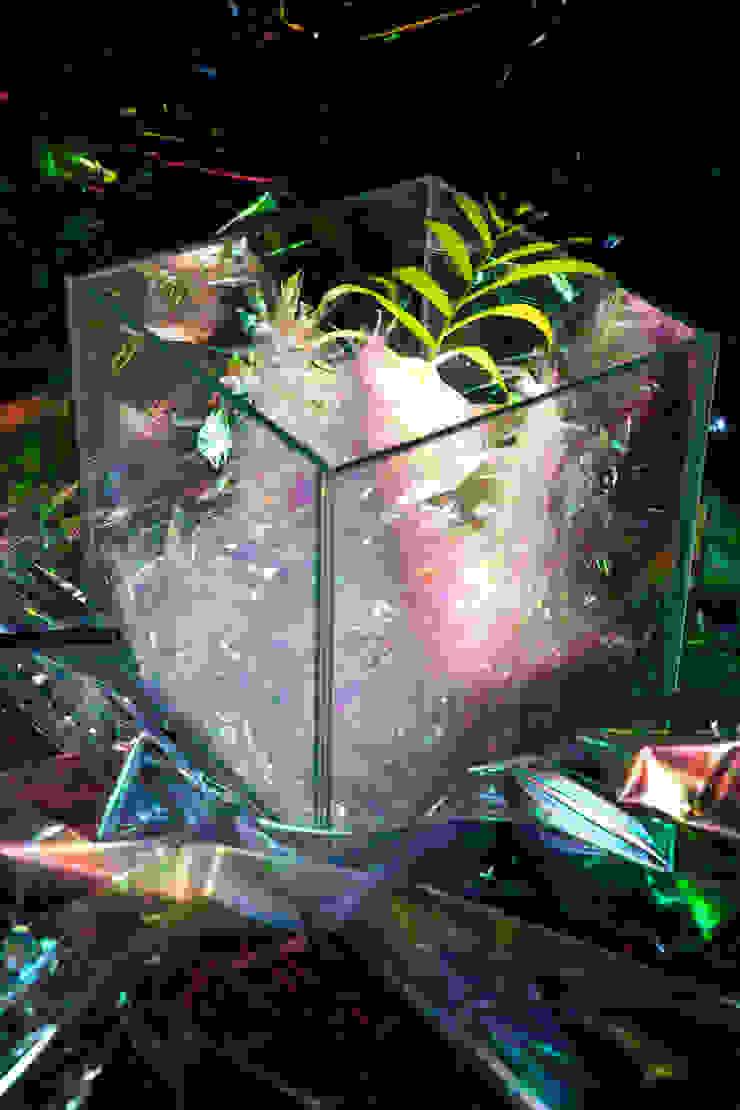 Water Moss Night (LED ver): 글로리홀 GLORYHOLE LIGHT SALES의 열렬한 ,휴양지