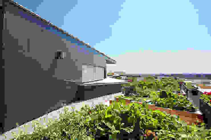 Co-Housing Jaspern Moderner Garten von pos sustainable architecture Modern
