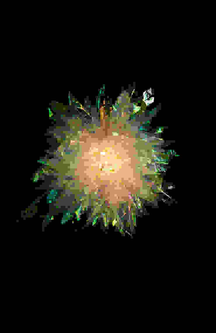 물이끼탄Water Moss Bomb: 글로리홀 GLORYHOLE LIGHT SALES의 열렬한 ,휴양지