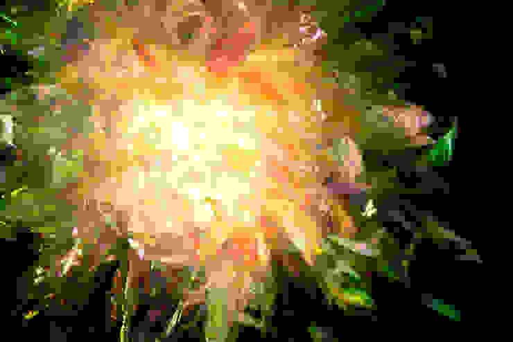 물이끼탄Water Moss Bomb (Detail): 글로리홀 GLORYHOLE LIGHT SALES의 열렬한 ,휴양지