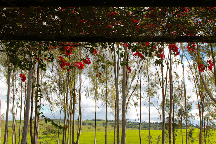 Jardines de estilo rural de LM Arquitetura | Conceito Rural