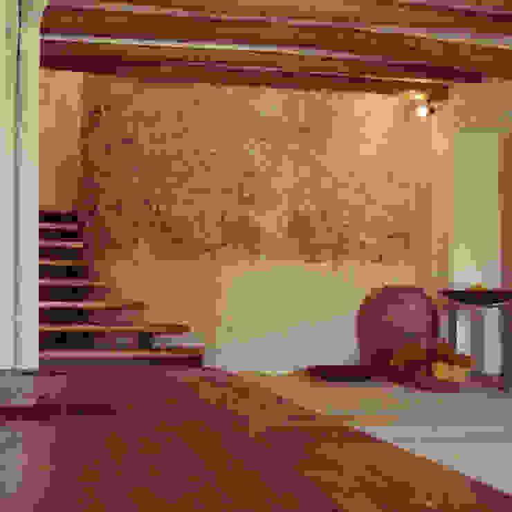 rehabilitación integral de masia, para turismo rural Bodegas de estilo rural de raddi ARQUITECTES Rural Piedra