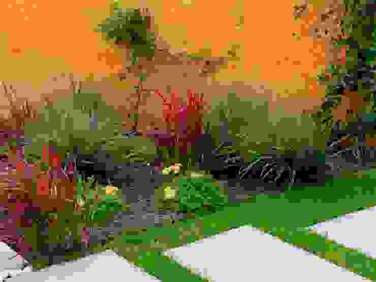 Vườn phong cách hiện đại bởi CONCEPTUELLES PAYSAGE ET DECORATION Hiện đại