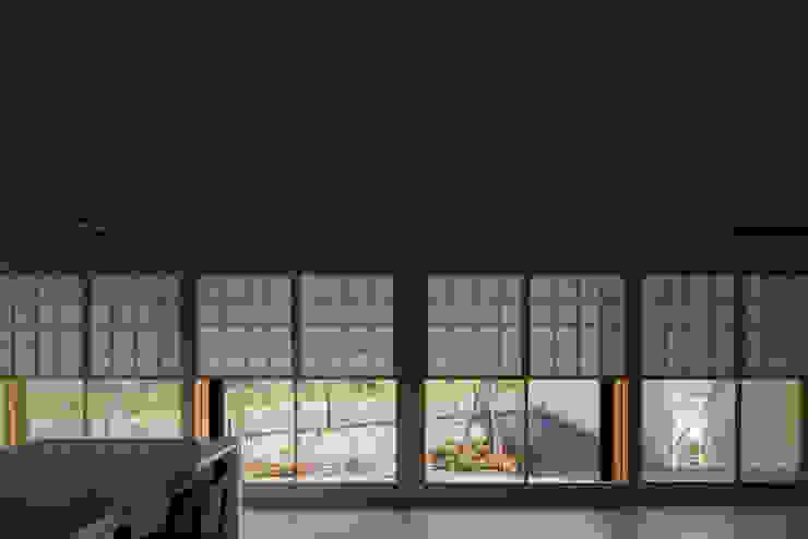 平屋に住まう モダンな 窓&ドア の TRANSTYLE architects モダン