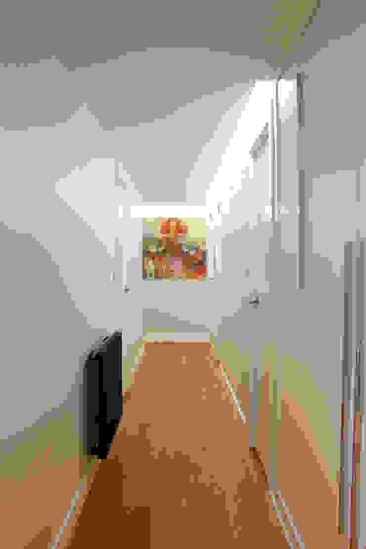 Modern corridor, hallway & stairs by Danma Design Modern Wood Wood effect