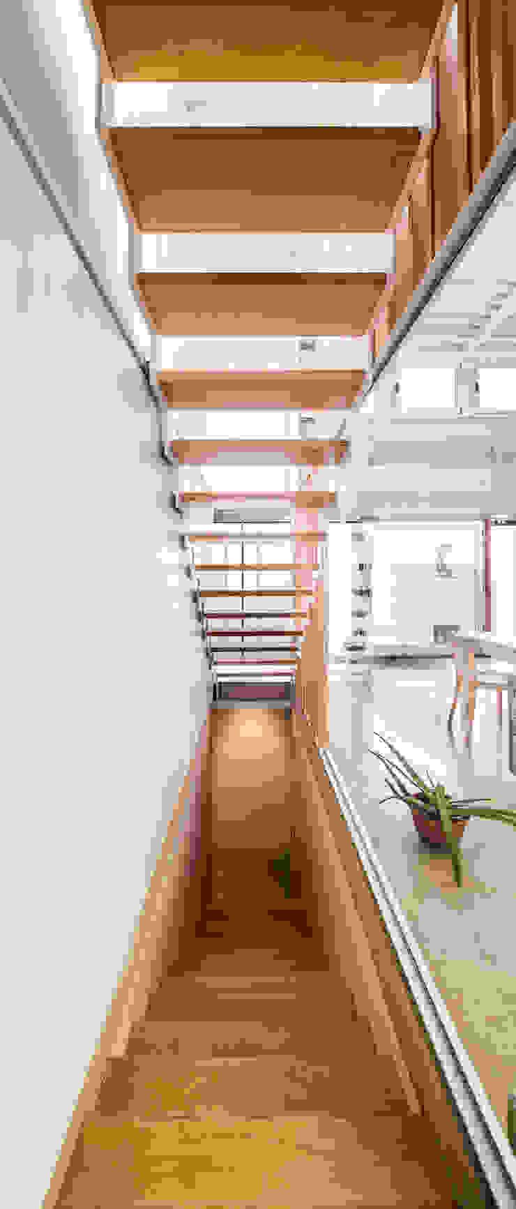 SAU-MIGDIA-HOUSE Pasillos, vestíbulos y escaleras de estilo moderno de Andres Flajszer Photography Moderno