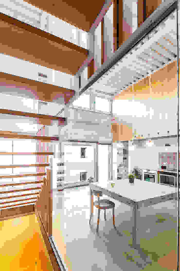 SAU-MIGDIA-HOUSE Comedores de estilo moderno de Andres Flajszer Photography Moderno