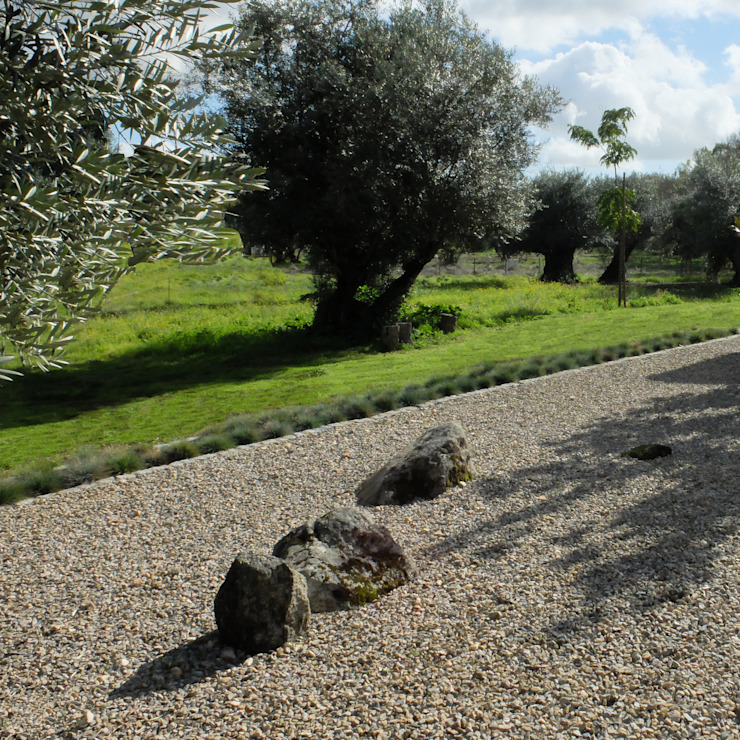 Atelier Jardins do Sul Minimalist style garden