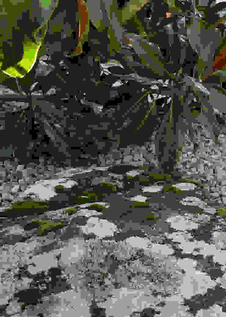 Jardim contemplativo em pedra Jardins minimalistas por Atelier Jardins do Sul Minimalista