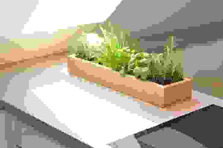 Einzelmöbel Livings modernos: Ideas, imágenes y decoración de Fang Interior Design Moderno