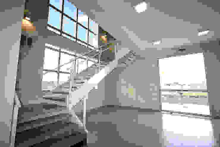 Acesso pavimentos Edifícios comerciais modernos por Habitat Arquitetos Moderno