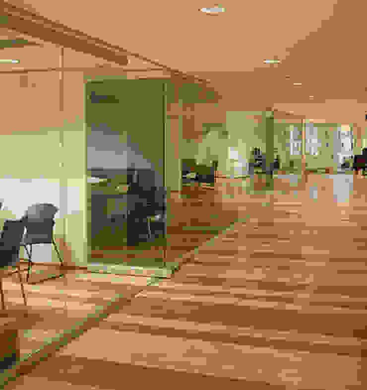Excélsior Estudios y despachos modernos de DIN Interiorismo Moderno