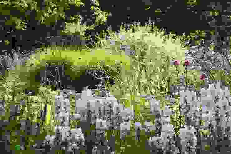Jardins campestres por Carla Wilhelm Campestre