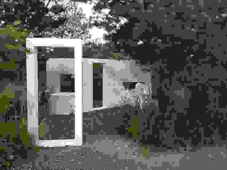 Carla Wilhelm Modern garden
