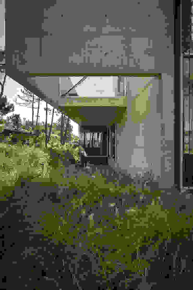 Jardines de estilo minimalista de guedes cruz arquitectos Minimalista