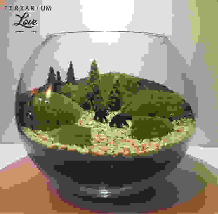 Terrarium loveが手掛けたインテリアランドスケープ