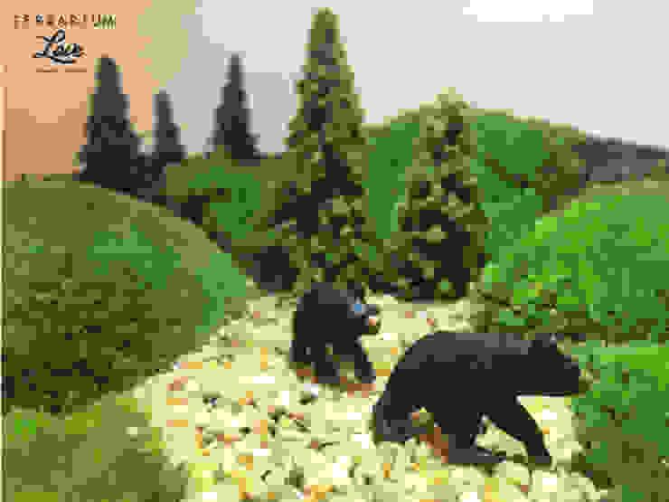 Terrarium love – Bear Terrarium: modern tarz , Modern