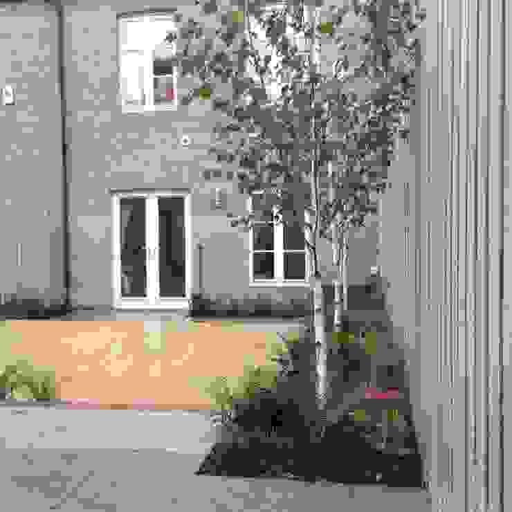 Small town garden Modern style gardens by homify Modern
