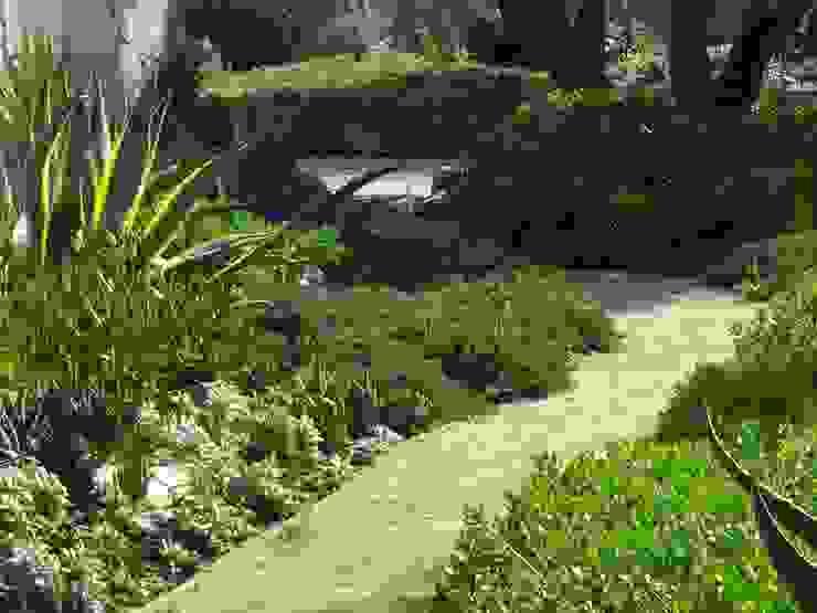 โดย Atelier Jardins do Sul เมดิเตอร์เรเนียน