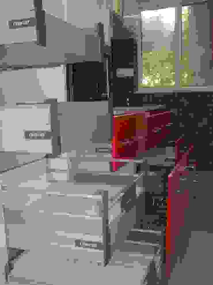 Impetus kitchens KitchenCabinets & shelves