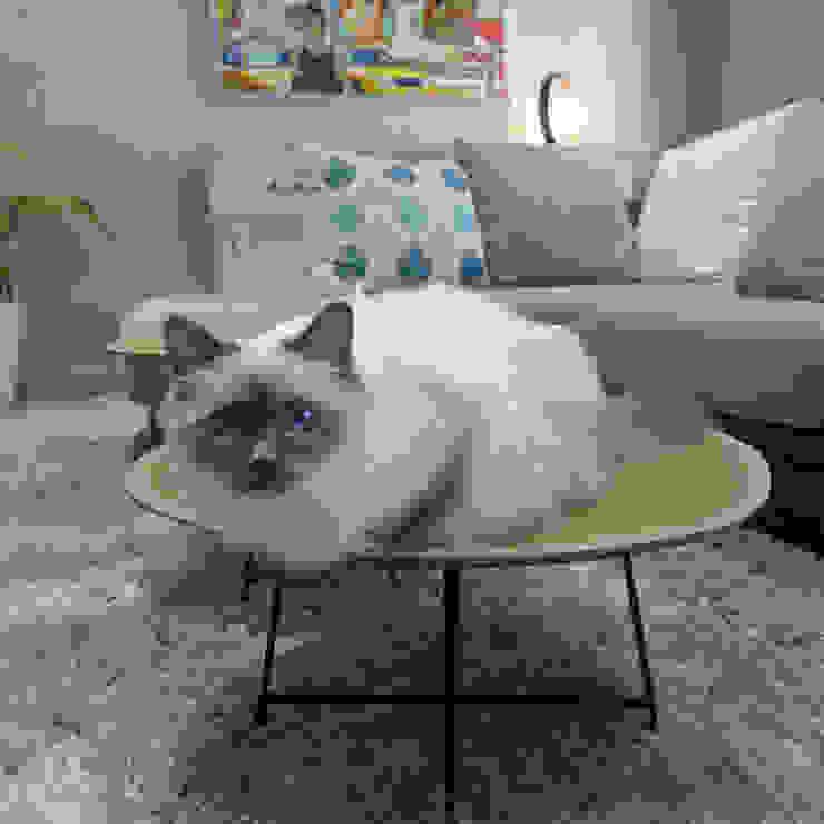Salas de estar modernas por homify Moderno Madeira Efeito de madeira