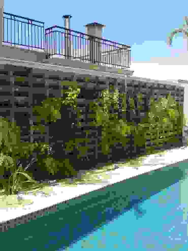 Reforma de Jardim Vertical Jardins tropicais por Eneida Lima Paisagismo Tropical