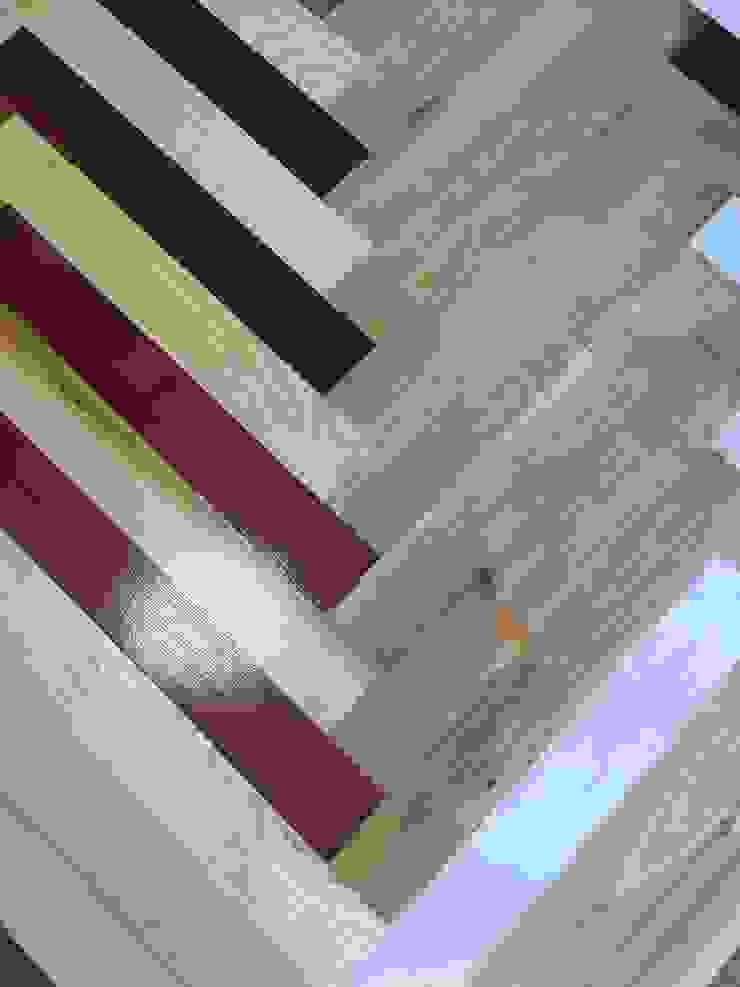 Wood Flooring Glasgow and Edinburgh: modern  by TF, Modern Engineered Wood Transparent