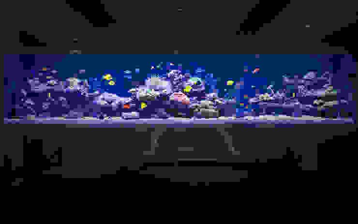 Grosvenor Bares e clubes modernos por Aquarium Architecture Moderno