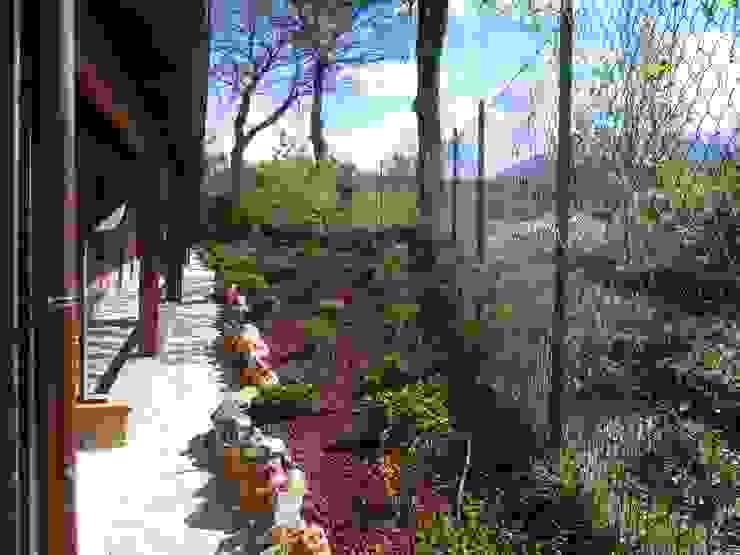 Projekty,  Ogród zaprojektowane przez Studio Botanico Ventrone Dr. Fulvio, Wiejski