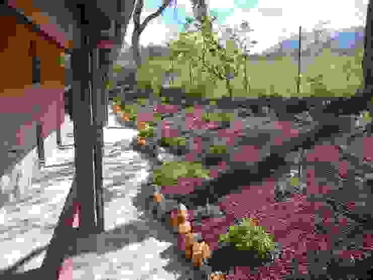 Country style garden by Studio Botanico Ventrone Dr. Fulvio Country