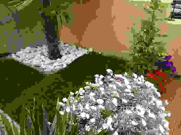Jardins modernos por Studio Botanico Ventrone Dr. Fulvio Moderno