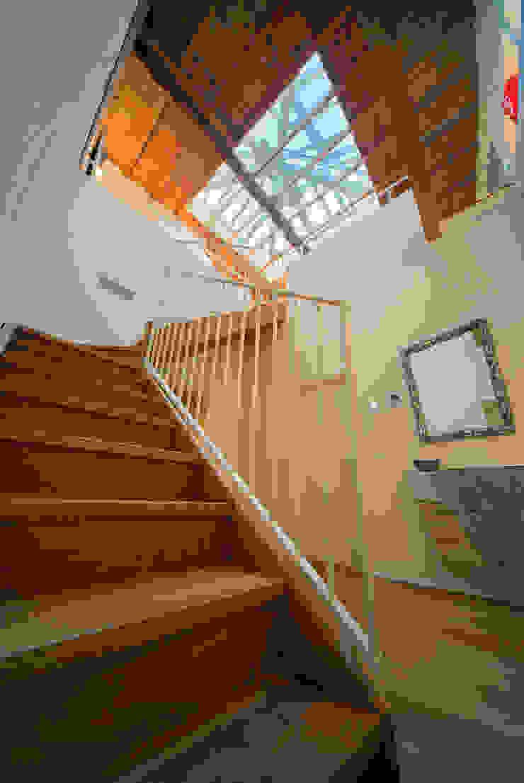 Couloir, entrée, escaliers modernes par studiodonizelli Moderne Bois Effet bois