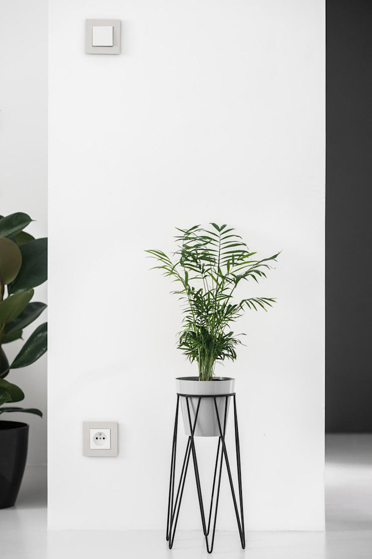 Livings de estilo minimalista de Joanna Kubieniec Minimalista