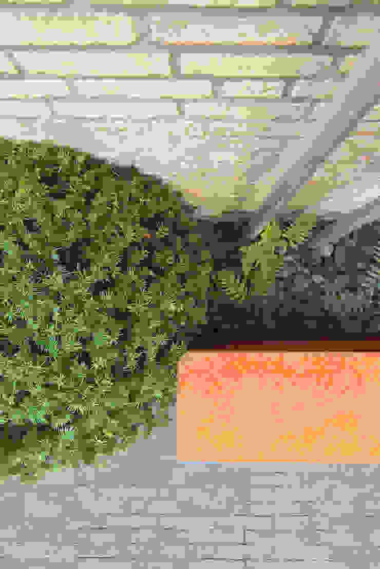 Strakke lijnen Moderne tuinen van De Rooy Hoveniers Modern