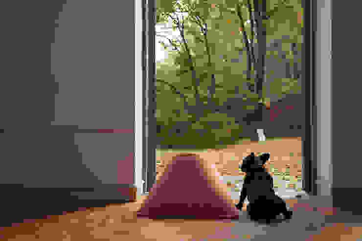 HOWLY: 하울팟의 현대 ,모던