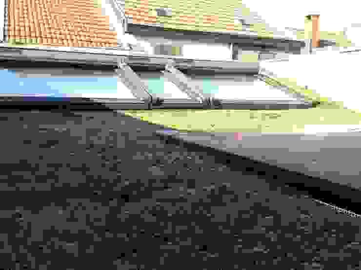 Toiture verte de l'annexe arrière Maisons classiques par Bureau d'Architectes Desmedt Purnelle Classique