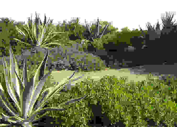 Сад в средиземноморском стиле от Atelier Jardins do Sul Средиземноморский