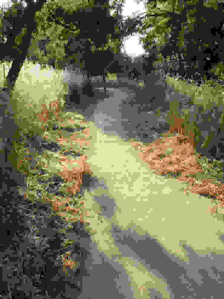 Percurso ao longo de quinta Jardins ecléticos por Atelier Jardins do Sul Eclético