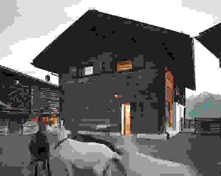 Дома в . Автор – meier architekten zürich, Кантри