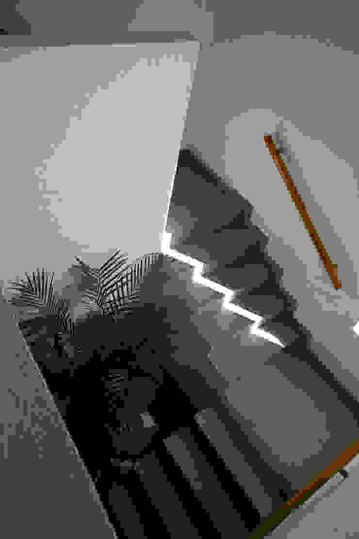 الممر الحديث، المدخل و الدرج من José Vigil Arquitectos حداثي