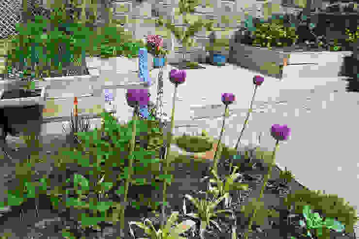 Contemporary Cottage Garden Rustieke tuinen van Yorkshire Gardens Rustiek & Brocante
