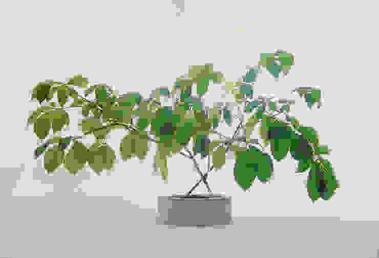 Concrete flower vase Betoniu GmbH 室內景觀